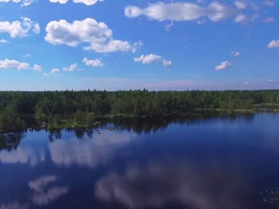 Участки в Выборгском районе Ленинградской области
